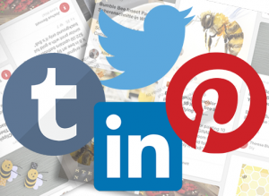 Social media promotion Viral Content Bee