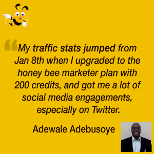 How Switching to Viral Content Buzz Pro Plan Boosted Our User's Traffic and Engagement