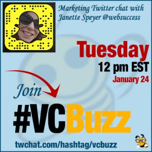 How to Succeed on Snapchat with Janette Speyer @websuccess #VCBuzz