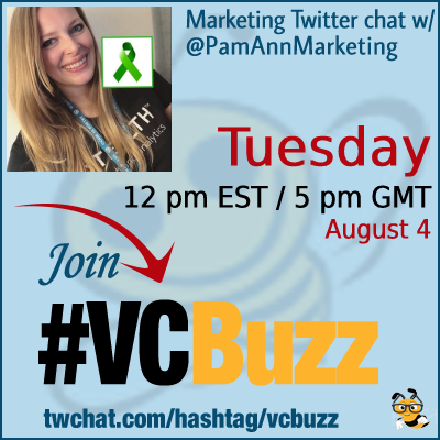 How to Diagnose the Cause of a Ranking Drop with @PamAnnMarketing #VCBuzz